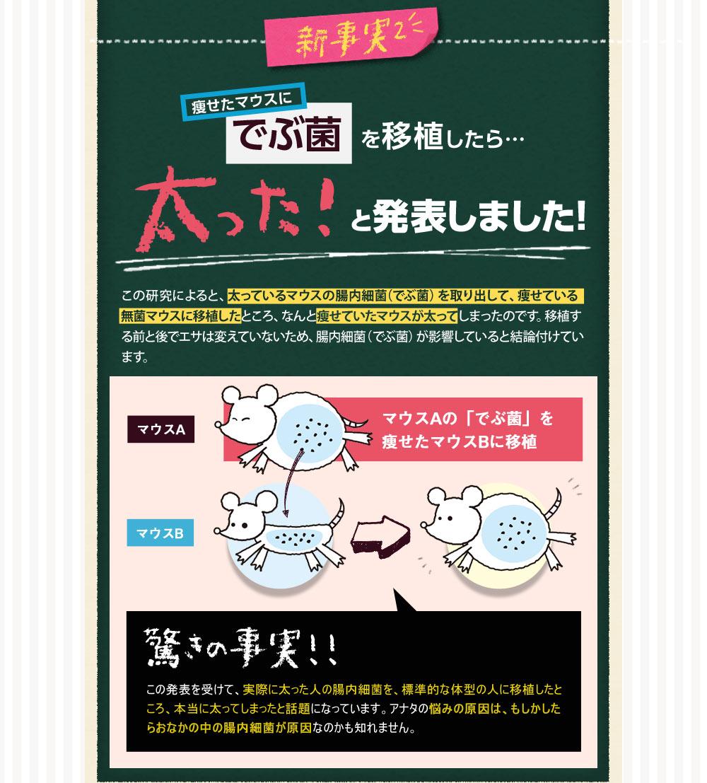 腸内サポートサプリ販売用ランディングページ(LP)デザイン・制作事例07
