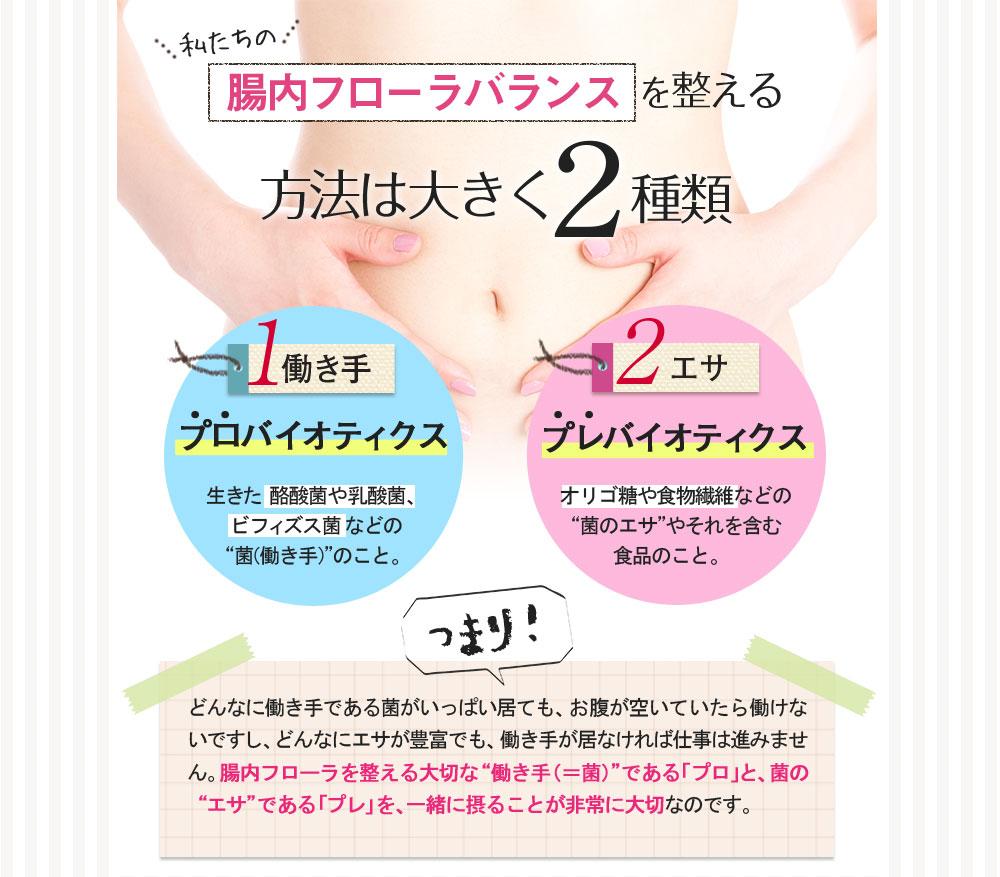 腸内サポートサプリ販売用ランディングページ(LP)デザイン・制作事例20